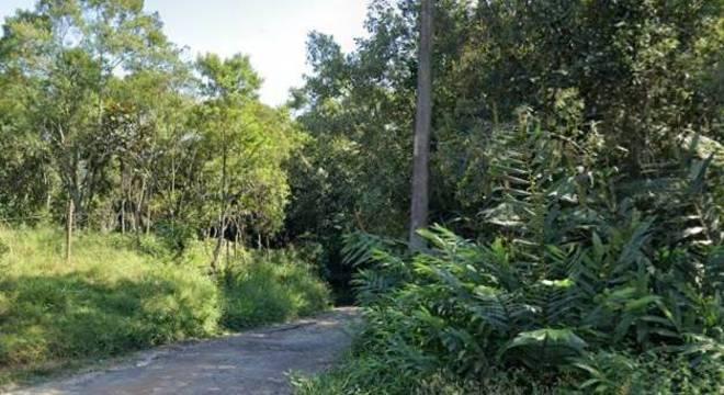 Acidente ocorreu no Parque Florestal, na região de Parelheiros