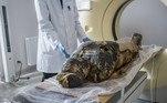 Cientistas poloneses anunciaram a descoberta de que uma múmia da coleção Museu Nacional de Varsóvia desde 1917 foi sepultada grávida, algo inédito na egiptologia. Eles usaram raio-x e perceberam ossos de um pequeno pé dentro do corpo embalsamado. Inicialmente, achava-se que seriam os restos de um sacerdote que teria vivido entre os séculos 1 a.C e 1 d.C., mas agoraacreditam que a múmia grávida pode ser ainda mais antiga