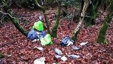 Macabro: bombeiro acha dezenas de pombos decapitados em parque