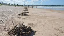 Cerca de 40 toneladas de lixo são recolhidas das praias de João Pessoa