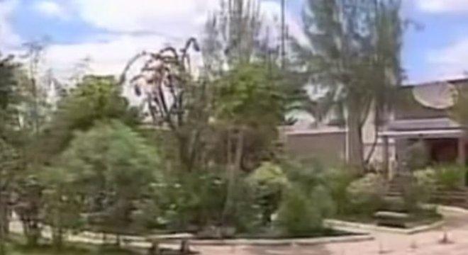 Policiais descobriram em 1996 que plantas presentes em casas e na praça da cidade eram maconha