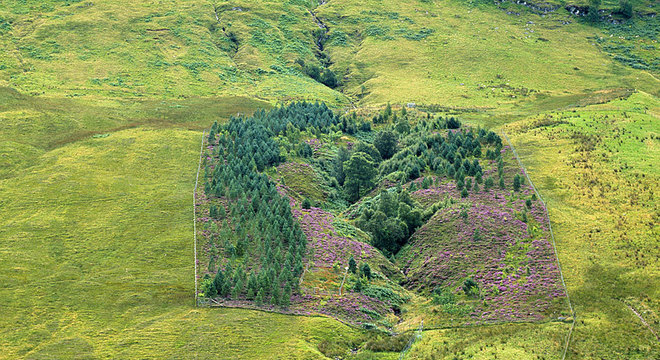 Pradarias na Escócia com cercado em que crescem árvores e flores