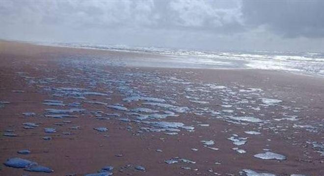 praia de Ponta dos Mangues, localizada no município de Pacatuba, amanheceu coberta por piche