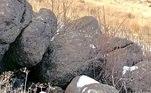 Veja de novo! Segundo os técnicos do departamento, os leões da montanha preferem áreas acidentadas, com rochas, o que ajuda a encontrar esconderijos. Ela tem um porte semelhante ao do leopardo, e chega a 72 kg e 1,55 m, sem a cauda. Geralmente é bastante solitário e mais ativo à noite