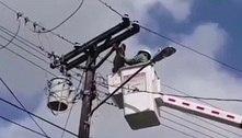 Bombeiros lentamente resgatam preguiça agarrada em poste