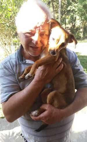 """""""O cão adulto viveu na rua, depois aprendeu a viver com centenas de cachorros no abrigo. Quando ele ganha um lar o afeto é diferente. Eles viram fãs do tutor"""", diz Andrea Barth"""