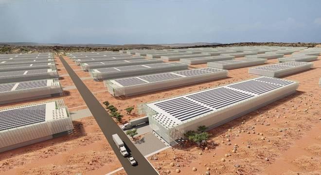 Projeto Marvella Farms quer construir hortas sustentáveis no deserto de Djibuti