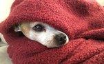 O cobertor, item indispensável no inverno, tem uma carga tributária de 26,05%.