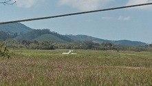 Avião de pequeno porte cai em área de mata na Grande São Paulo
