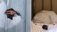 Moradora desperta após queda de meteorito sobre o travesseiro
