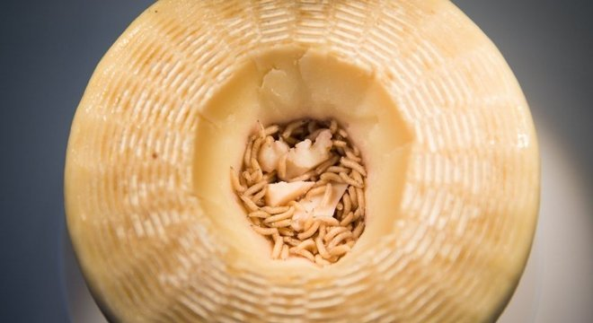 Queijo Casu Marzu tem sabor forte devido, em parte, a excrementos de larvas em seu interior