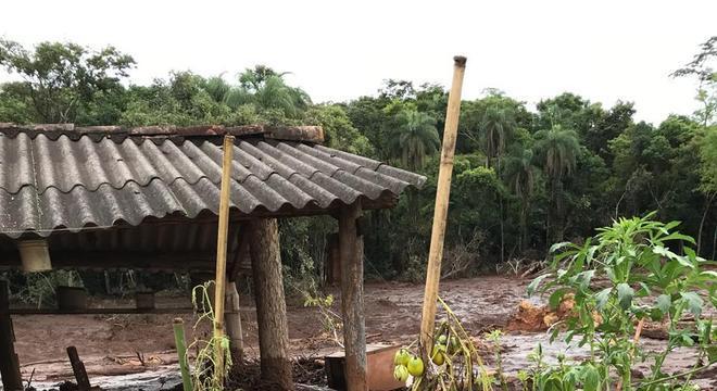 Helio plantava mandioca, banana e cará, além de produzir mel, que vendia no centro de Brumadinho
