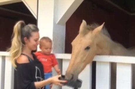 Égua foi levada para sítio isolado da família