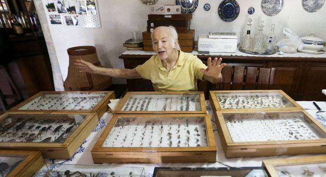 O médico Luiz Stawiarski doará mais de 2 mil espécimes de borboletas e outros insetos