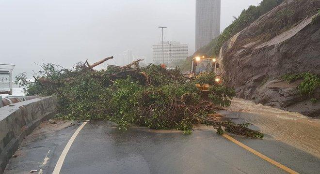 Grande quantidade de água e galhos de árvore bloqueiam a avenida Niemeyer