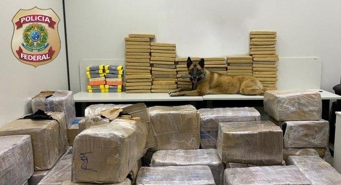 Polícia apreende mais de uma tonelada de drogas na Dutra com ajuda de cães farejadores