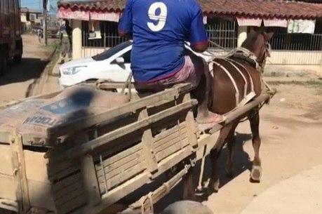 Veículos de tração animal são proibidos no Rio