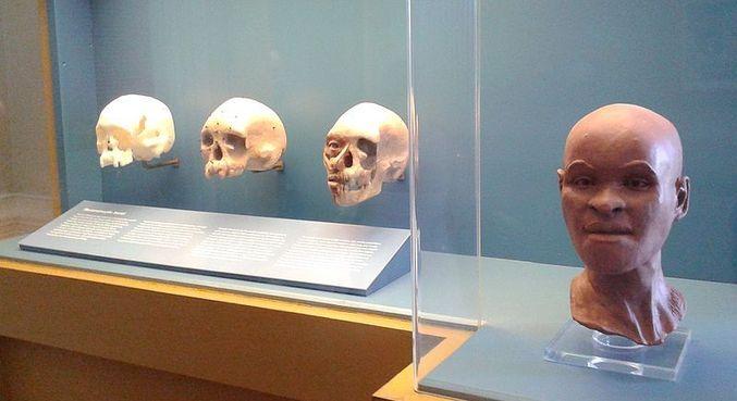 Crânio de Luzia foi achado em região que pode ser afetada por fábrica