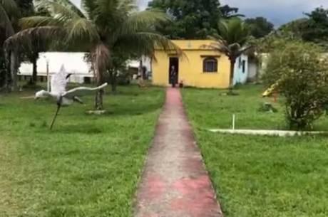 Mulher foi presa em um sítio em Magé, na Baixada Fluminense