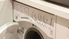 Raposa invade casa e usa máquina de lavar roupa como abrigo