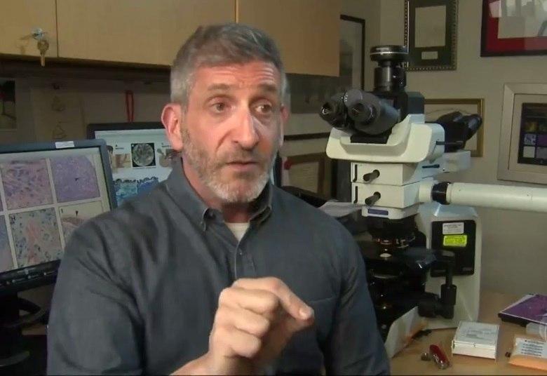 'Agora que sabemos o caminho que o câncer faz no nosso corpo, podemos entrar lá, identificar o trajeto das células e fazer algo para interferir nisso', explicaNeil Theise, um dospatologistas da Escola de Medicina da Universidade de Nova York