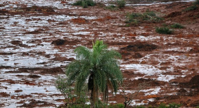Barragem Mina do Córrego do Feijão se rompeu em Brumadinho (MG)