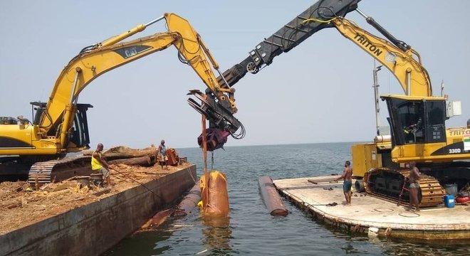 Remoção de árvores do lago Volta; madeira é considerada extremamente resistente