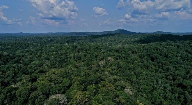 Protocolo traz incentivos para a conservação da biodiversidade