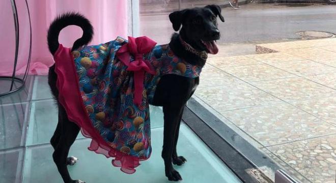 De vestidinho e tudo, Banguela curtiu muito a sua festa de aniversário