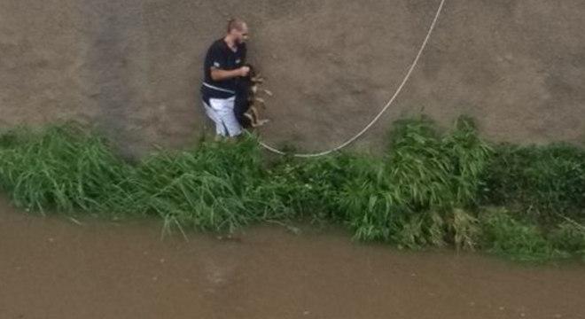 Cachorro foi arrastado pelas águas durante enchente na Avenida do Estado