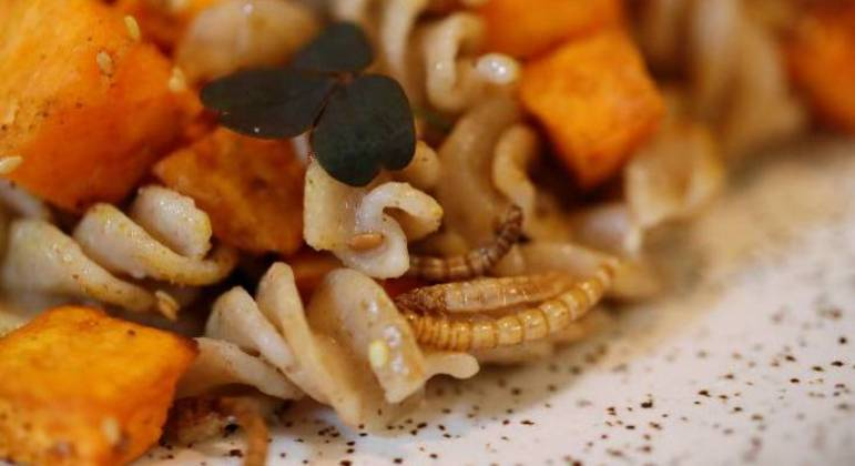 Restaurante francês serve pratos feitos com insetos e agrada clientes