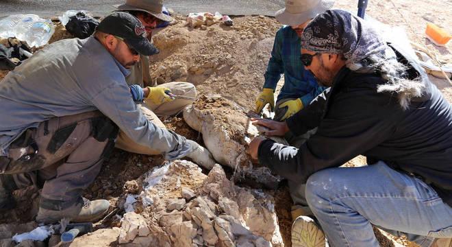 Pliossauros viveram 160 milhões de anos atrás