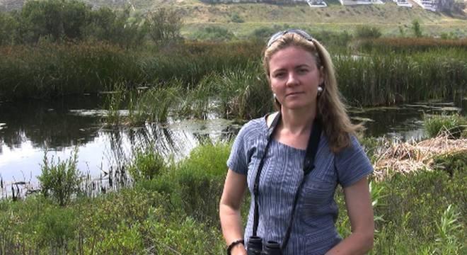 Audubon Andrea Jones, da organização ambientalista National Audubon Society, diz que os ataques estão com certeza aumentando