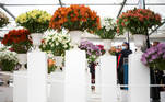 A visitor photographs a floral display while attending the final day of the Chelsea Flower Show, delayed from its usual spring dates because of the lockdown restrictions amid the spread of the coronavirus disease (COVID-19) pandemic in London, Britain, September 26, 2021. REUTERS/Henry Nicholls
