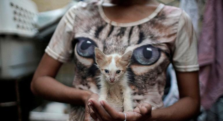Ativistas celebram vitória em Cuba sobre os diretos dos animais