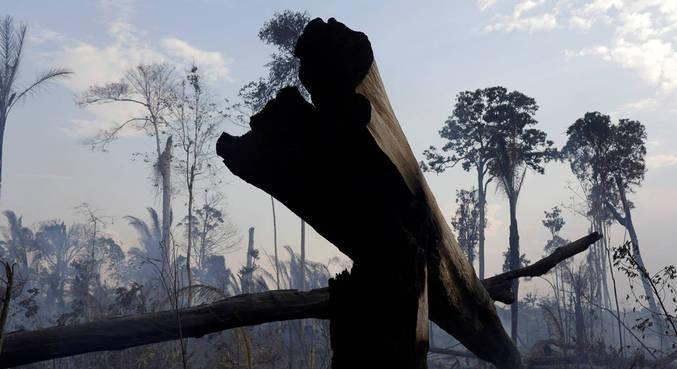 Queimada para abrir floresta em Rondônia