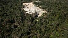 UE pede que Brasil apresente dados positivos sobre Amazônia