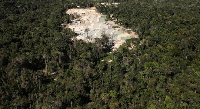 Retirada ilegal de madeira e mineração colaboram para o desmatamento