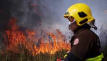 Governo quer militares em ações de preservação da Amazônia até 2022