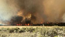 Grande incêndio florestal cresce nos EUA e desaloja população