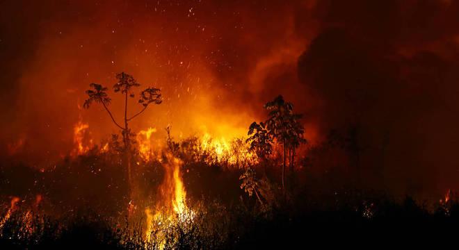 Labaredas correndo capim seco são comuns da Califórnia ao Mato Grosso