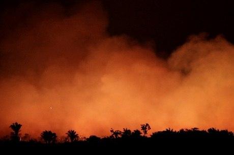 Incêndios afetam múltiplas áreas da Amazônia