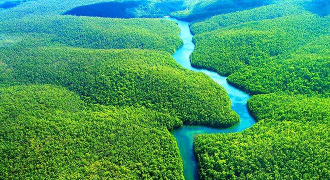Empresas visam a exploração de blocos de petróleo na foz do Rio Amazonas