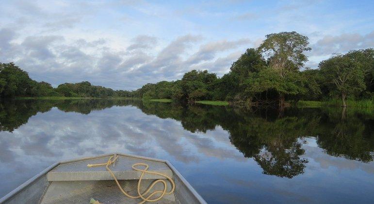 Concessão de florestas no Amazonas ainda depende de aval do presidente Jair Bolsonaro
