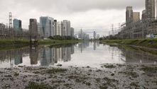 Despoluição de rios é desafio para cidades paulistas