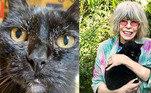 Rita Lee teve uma grande companheira ao longo da vida. Em 2020, a cantora perdeu a felina Sophia e desabafou nas redes: 'Minha guardiã por 25 anos'