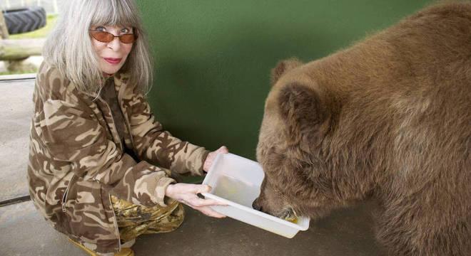 Rita Lee escreveu um livro infantil inspirado na história da ursa