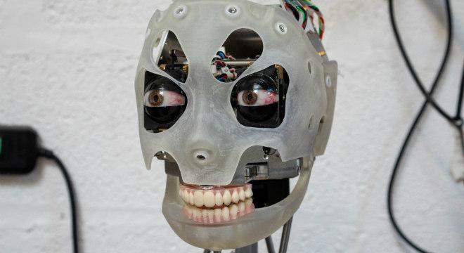 Empresa quer pagar meio milhão por rosto de robô