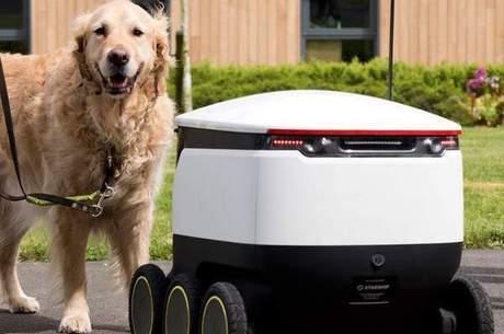 Cães guias e robôs dividem a calçada sem problemas
