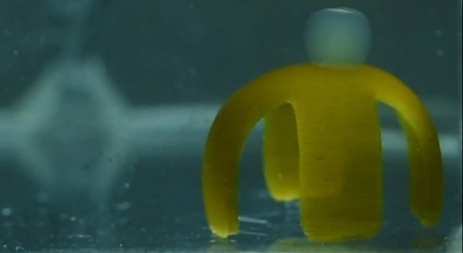 90% da estrutura do robô é feita de água